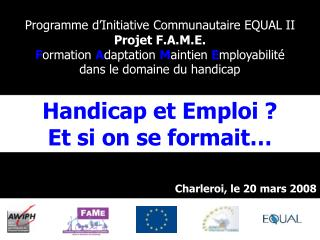 Programme d Initiative Communautaire EQUAL II  Projet F.A.M.E. Formation Adaptation Maintien Employabilit   dans le doma