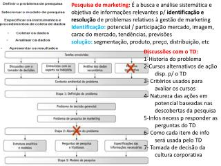 Discussões com o TD: 1-Historia do problema 2-Cursos alternativos de ação  disp . p/ o TD