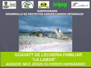 SUBPROGRAMA DESARROLLO DE PROYECTOS AGROPECUARIOS INTEGRALES