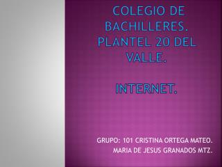 COLEGIO DE BACHILLERES. PLANTEL 20 DEL VALLE. INTERNET.