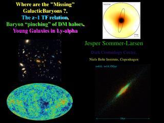 Jesper Sommer-Larsen Dark Cosmology Centre, Niels Bohr Institute,  Copenhagen