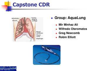 Capstone CDR