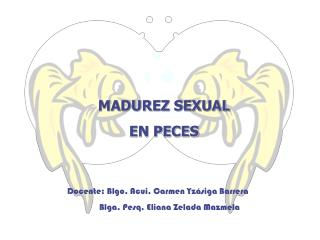 MADUREZ SEXUAL EN PECES