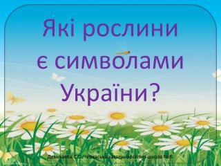 Які рослини  є символами України?