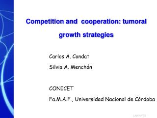 Competition and  cooperation: tumoral growth strategies