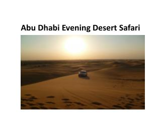 Abu Dhabi Evening Desert Safari