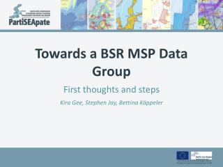 Towards  a BSR MSP Data Group