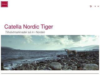 Catella Nordic Tiger