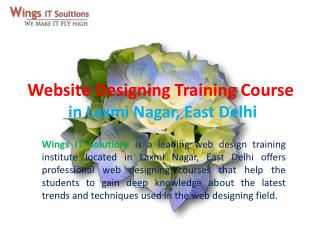 Website Designing training Course in Delhi