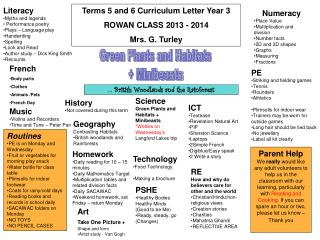 Terms 5 and 6 Curriculum Letter Year 3 ROWAN CLASS 2013 - 2014 Mrs. G. Turley