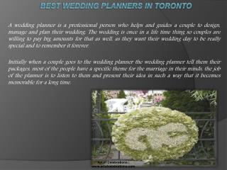 The Best Wedding Planners Toronto