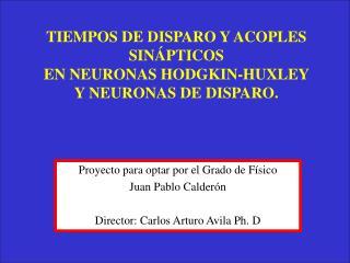 TIEMPOS DE DISPARO Y ACOPLES SINÁPTICOS  EN NEURONAS HODGKIN-HUXLEY  Y NEURONAS DE DISPARO.