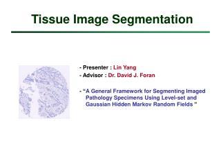 Tissue Image Segmentation