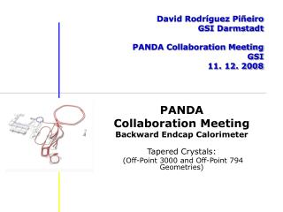 David Rodríguez Piñeiro GSI Darmstadt PANDA Collaboration Meeting GSI 11. 12. 2008