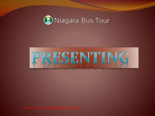 Niagara Falls tour reviews