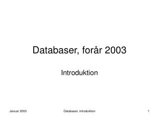 Databaser, forår 2003
