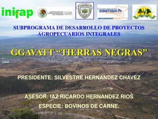 SUBPROGRAMA DE DESARROLLO DE PROYECTOS AGROPECUARIOS INTEGRALES