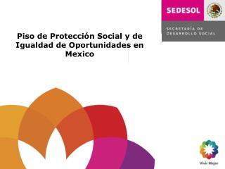 Piso de  Protección Social y de  Igualdad de Oportunidades en Mexico