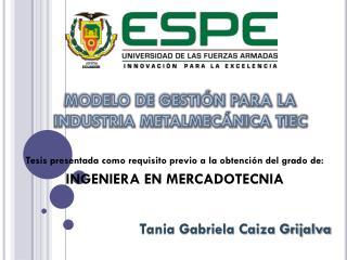 MODELO DE GESTIÓN PARA LA INDUSTRIA METALMECÁNICA TIEC