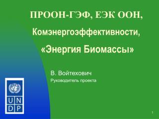 ПРООН - ГЭФ, ЕЭК ООН, Комэнергоэффективности,   «Энергия Биомассы»