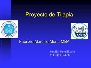 Proyecto de Tilapia