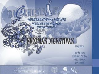 UNIVERSIDAD AUTONOMA DE CHIAPAS FACULTAD DE CIENCIAS QUIMICAS EXTENSION OCOZOCOAUTLA