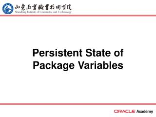 Persistent State of Package Variables