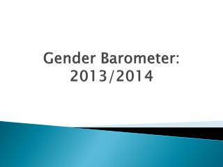 Gender Barometer: 2013/2014