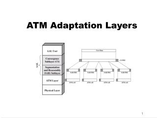 ATM Adaptation Layers