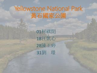 Yellowstone National Park 黃石國家公園