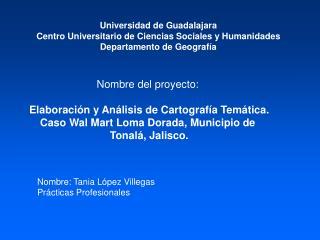 Nombre del proyecto: Elaboración y Análisis de Cartografía Temática.