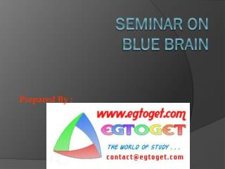 SEMINAR ON BLUE BRAIN