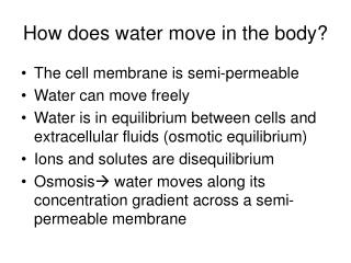 How does water move in the body?