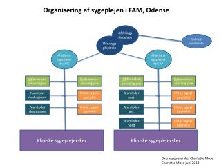 Organisering af sygeplejen i FAM, Odense