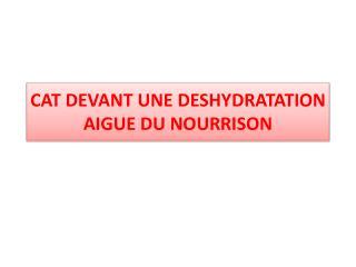 CAT DEVANT UNE DESHYDRATATION  AIGUE DU NOURRISON