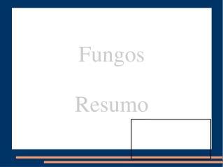 Fungos Resumo