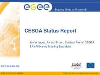 CESGA Status Report
