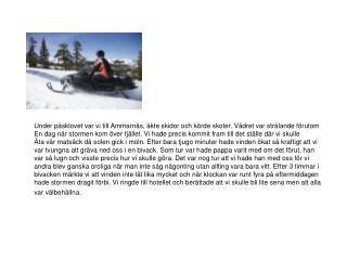 Under påsklovet var vi till Ammarnäs, åkte skidor och körde skoter. Vädret var strålande förutom