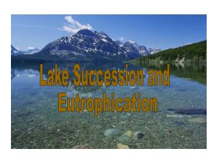 Lake Succession and