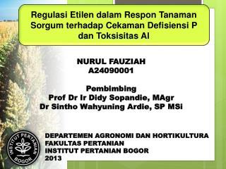 Regulasi Etilen dalam Respon Tanaman Sorgum terhadap Cekaman Defisiensi P dan Toksisitas Al