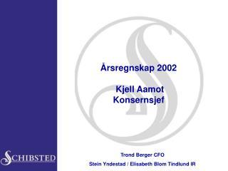 Årsregnskap 2002   Kjell Aamot Konsernsjef