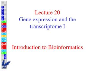 Lecture 20 Gene expression and the transcriptome I Introduction to Bioinformatics