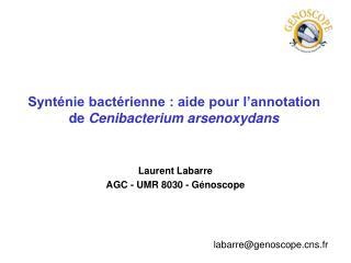 Synténie bactérienne : aide pour l'annotation de Cenibacterium arsenoxydans