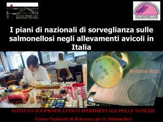 I piani di nazionali di sorveglianza sulle salmonellosi negli allevamenti avicoli in Italia