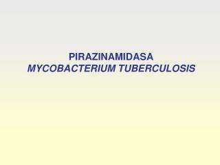 PIRAZINAMIDASA  MYCOBACTERIUM TUBERCULOSIS