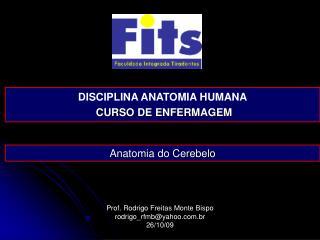 Prof. Rodrigo Freitas Monte Bispo rodrigo_rfmb@yahoo.br 26/10/09