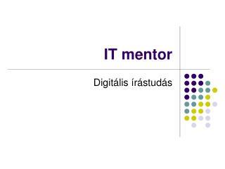 IT mentor