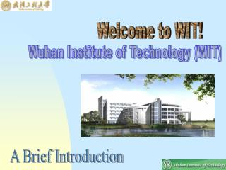 Wuhan Institute of Technology (WIT)
