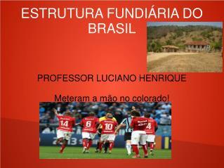 ESTRUTURA FUNDIÁRIA DO BRASIL