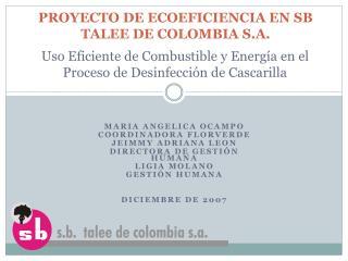 PROYECTO DE ECOEFICIENCIA EN SB TALEE DE COLOMBIA S.A.